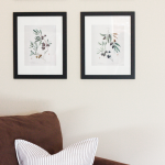 Olive Branch Botanical Prints